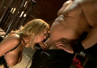 Lovely porn sweetheart Trina Michaels gets banged with a hawt spunk fountain